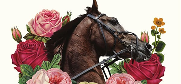Melbourne Cup Whats On 2019 07 17